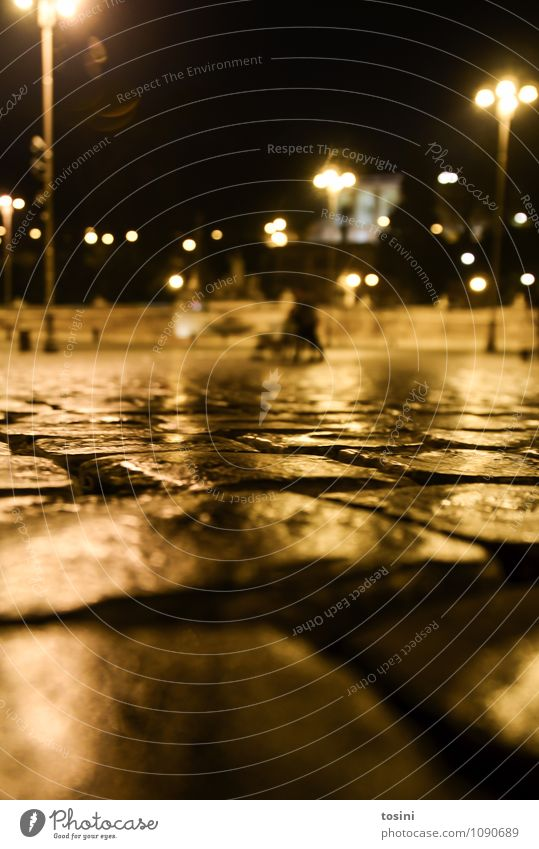 perspective Town Places Cold Paving stone Wet Lighting Lamp City life Urbanization Perspective Dark Worm's-eye view Rome Pavement Street lighting Night shot