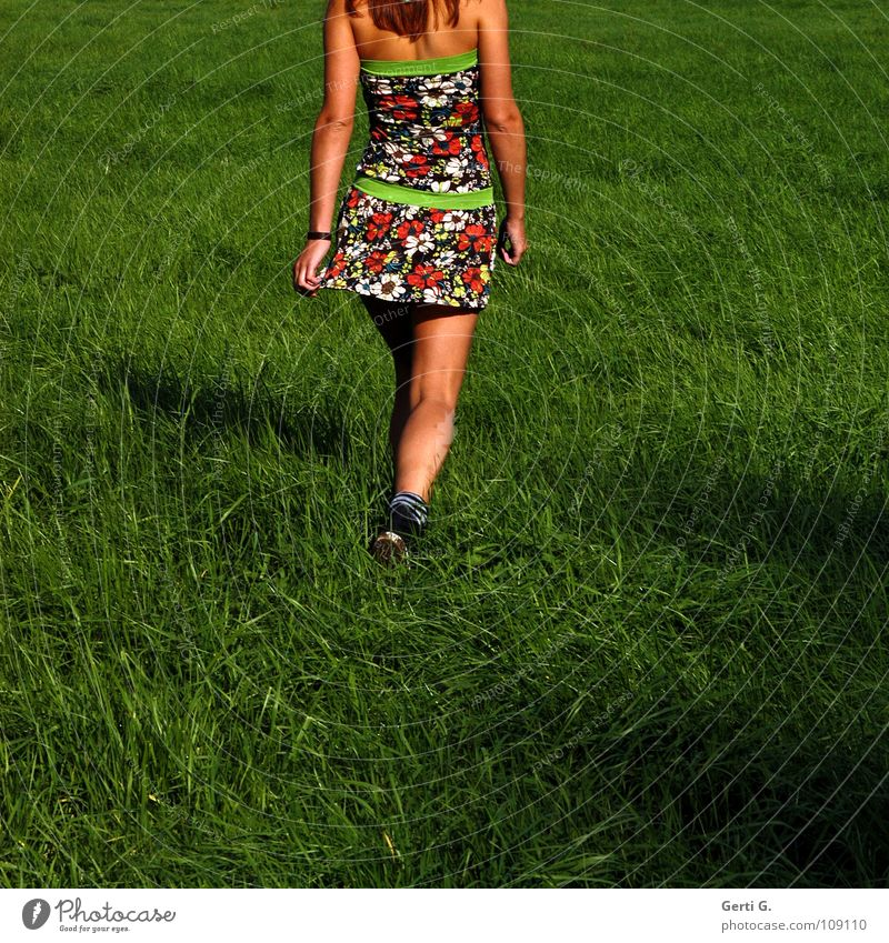 Woman Beautiful Summer Meadow Grass Movement Warmth Legs Healthy Brown Shadow Going Lawn Dress Physics Thin