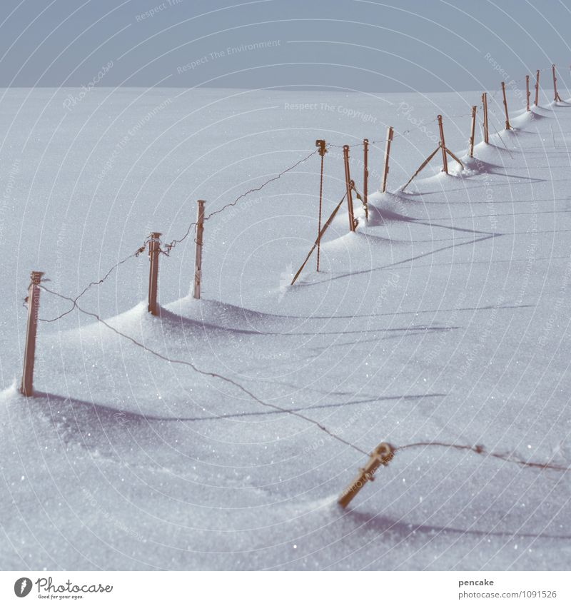 wire top Nature Landscape Elements Winter Ice Frost Snow Field Sign Authentic Life Diligent Disciplined Hope Belief Longing Time Target Fence Pasture Wire