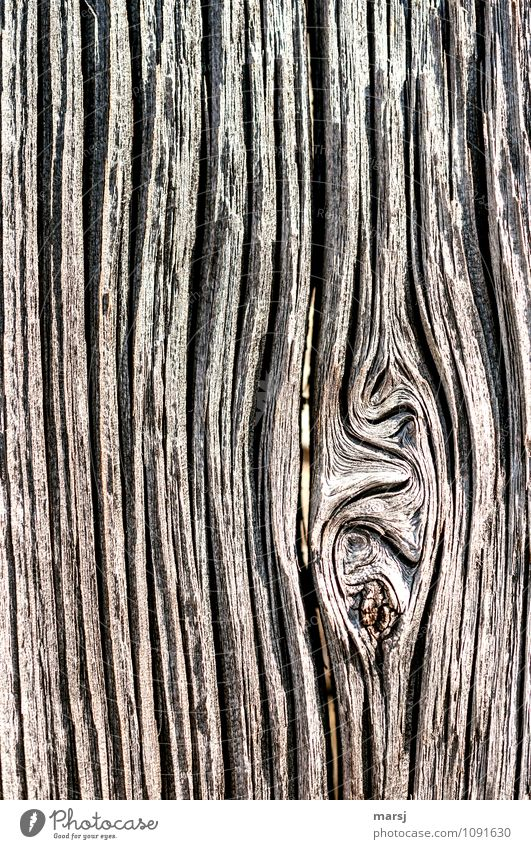 willful Wooden board Knothole Wooden wall Line Annual ring Old Exceptional Dark Authentic Simple Uniqueness Natural Brown Endurance Unwavering Sadness Death