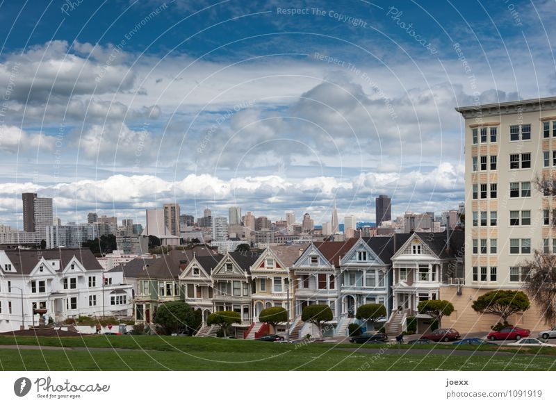 Painted Ladies Sky Clouds Beautiful weather Meadow San Francisco Town Skyline House (Residential Structure) Tourist Attraction Old Blue Multicoloured White