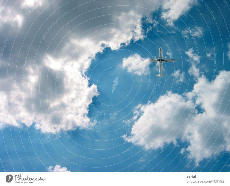 LuckyShot Airplane Clouds Propeller aircraft Beginning Speed Small Aviation Services Industry Sky Beam of light Logistics Airplane landing Hide