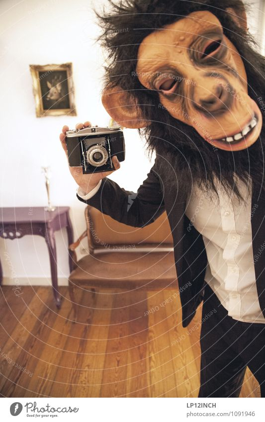 SELFIE AFFEN. I Entertainment Hallowe'en Human being Masculine Young man Youth (Young adults) Head 1 18 - 30 years Adults 30 - 45 years Event Shows Monkeys