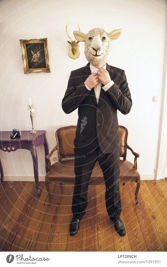 Sharp. XII Office work Services Stock market Business Career Success Closing time Masculine Man Adults 1 Human being Event Suit Sheep Living or residing Retro