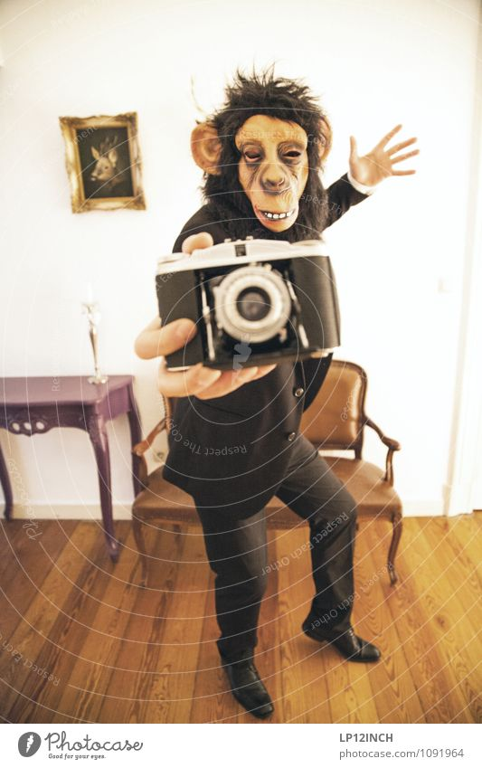 SELFIE AFFEN. IV Masculine Young man Youth (Young adults) Man Adults 1 Human being Suit Monkeys Animal Take a photo Camera Utilize Illness Town Crazy Joy