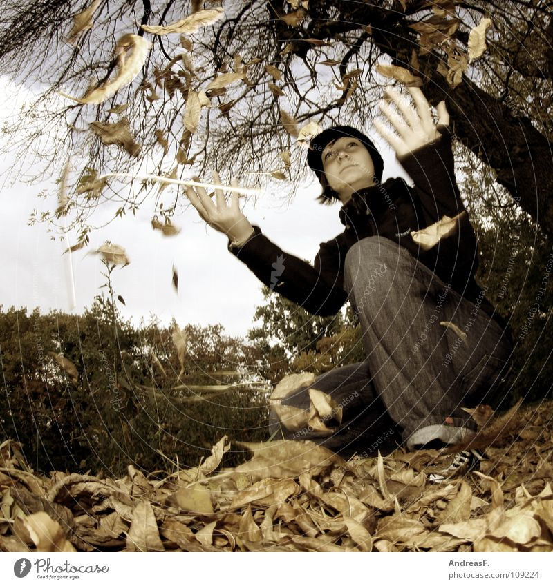 Woman Nature Youth (Young adults) Tree Joy Leaf Forest Autumn Playing Park To go for a walk Throw Autumn leaves October Young woman