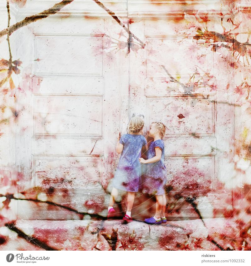 Human being Child Joy Girl Feminine Blossom Natural Spring Playing Pink Together Friendship Infancy Happiness Smiling Joie de vivre (Vitality)