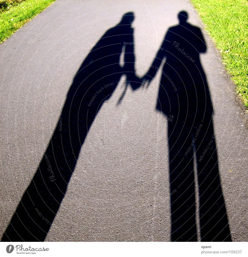 friendship Shadow play Green Meadow Sunlight Man Woman Together Love Lanes & trails Street Perspective Human being Couple Connection Divide prostrate sons