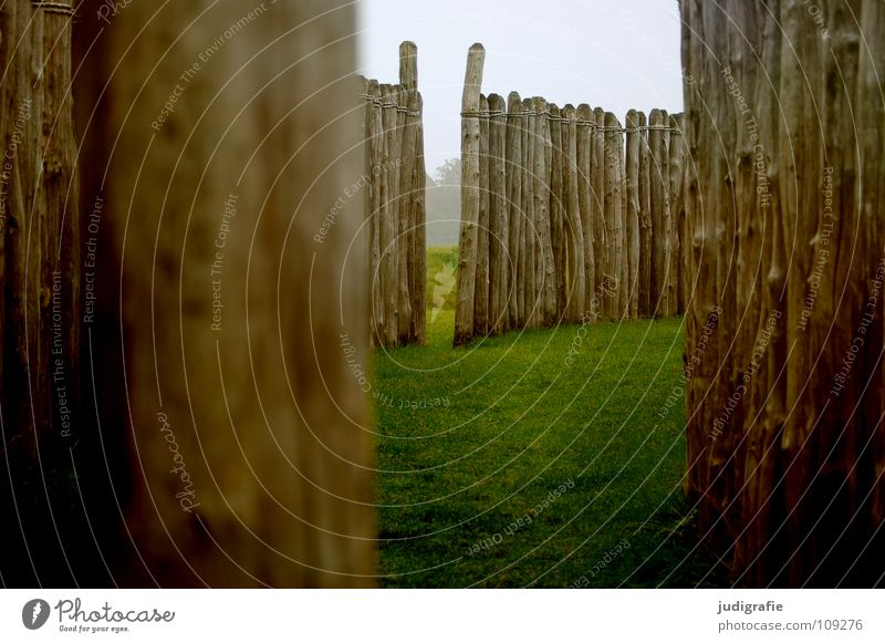 Nature Colour Meadow Wood Wall (barrier) Lanes & trails Fog Break Seasons Manmade structures Historic Fence Tree trunk Pole Observatory Summer solstice