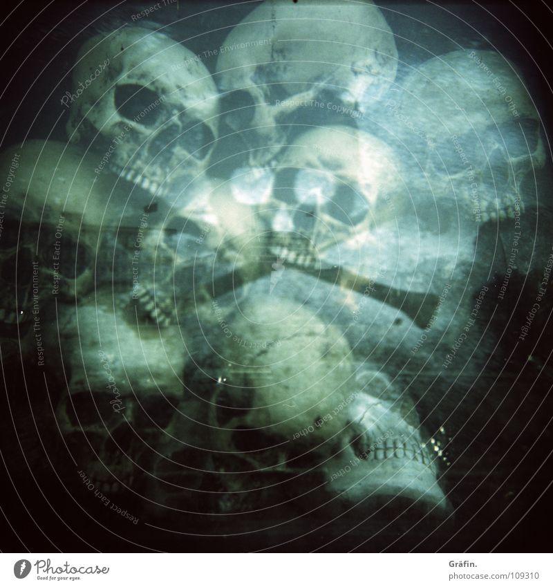 Head Teeth Transience Creepy Obscure Ghosts & Spectres  Window pane Hallowe'en Death's head Shop window Holga Cross processing St. Pauli