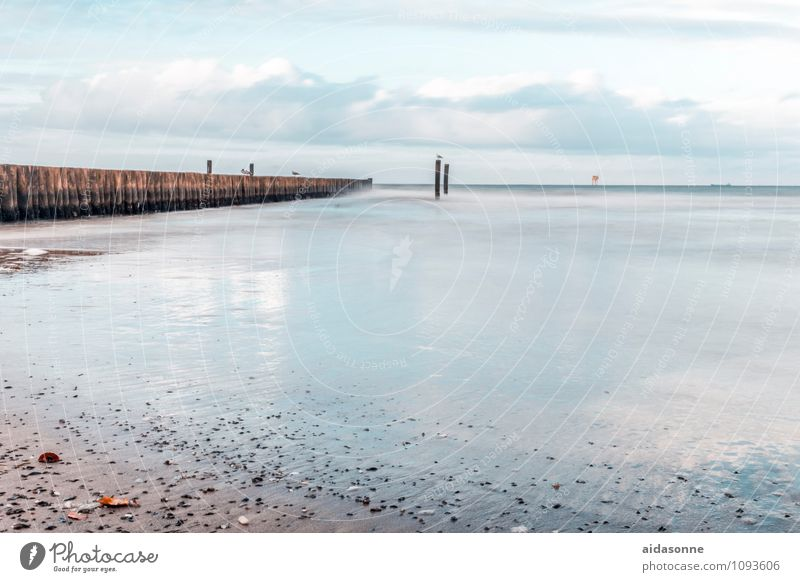 Nature Water Landscape Calm Stone Sand Germany Horizon Air Weather Contentment Beautiful weather Baltic Sea Serene Seagull Mecklenburg-Western Pomerania