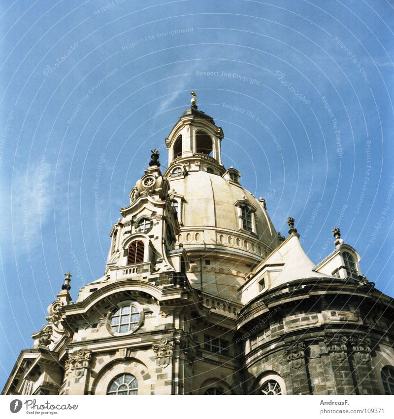 Church of Our Lady Dresden Saxony Domed roof Tower Tourism Sightseeing Art Attraction Tourist Attraction Summery Renewal Destruction War Monument Culture