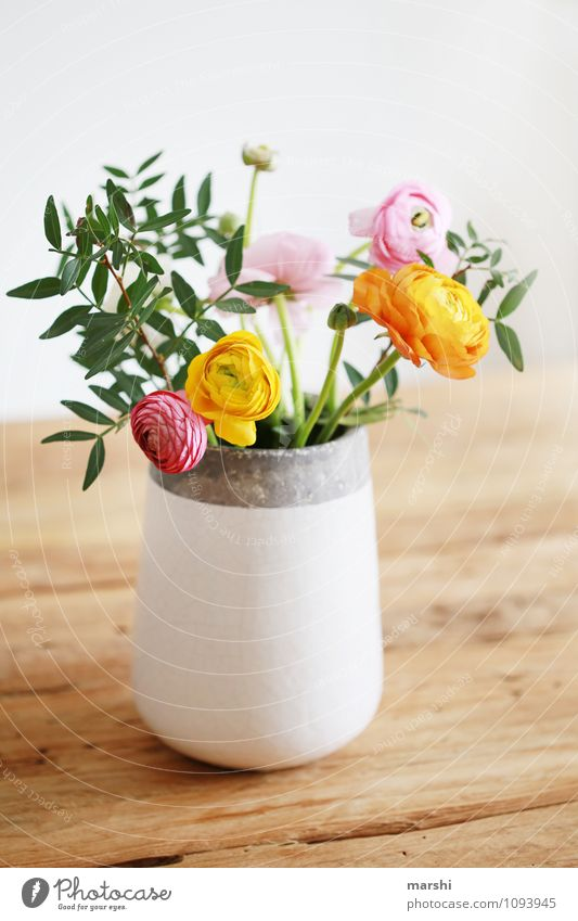 favourite flowers Nature Plant Spring Flower Blossom Foliage plant Pot plant Multicoloured Yellow Orange Pink Moody Vase Decoration Blossoming Bouquet