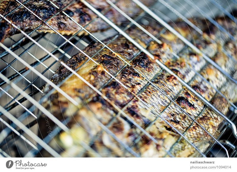 Grilled gilthead Food Fish Nutrition Lunch Dinner Organic produce Diet Summer Warmth Barbecue (apparatus) Rust To enjoy Fresh Healthy Delicious Natural Juicy