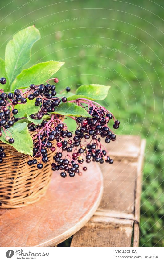 Elderberries on the garden table Food Fruit Picnic Lifestyle Style Design Healthy Eating Summer Garden Nature Beautiful weather Plant Yellow Vitamin Berries