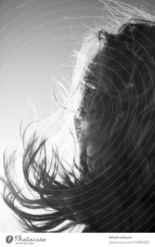 souffler Art Esthetic Contentment Wind Hair and hairstyles Blow Many Woman Woman`s head Haircut Shock of hair Hairdressing Sun Summer Black & white photo