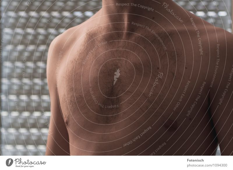 man's breast Human being Masculine Skin Chest 18 - 30 years Youth (Young adults) Adults Eroticism Naked Thin Colour photo Interior shot Studio shot Close-up