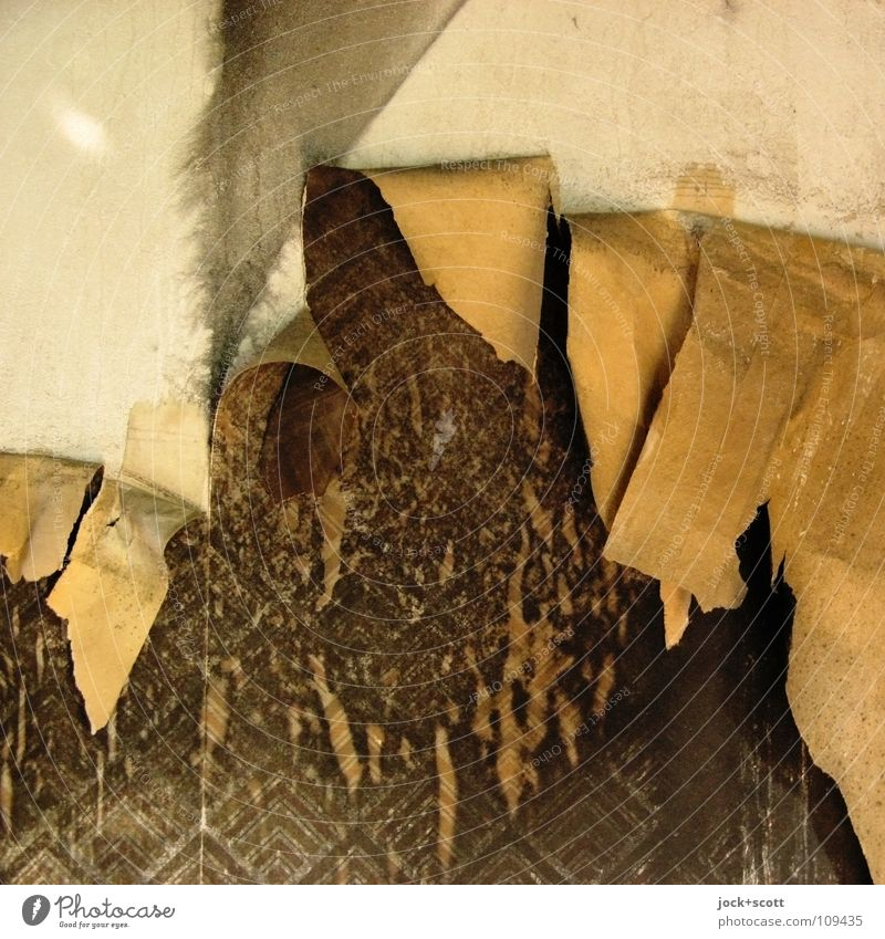 wallpaper delamination Decoration Wallpaper Office Wall (barrier) Wall (building) Paper Ornament Old Dirty Hideous Broken Trashy Brown Fatigue Exhaustion Stress