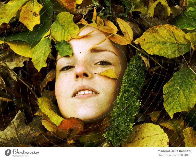 Lost Face Adventure Feminine Woman Adults Nature Earth Autumn Leaf Moss Forest Looking Cold Wet Brown Yellow Green Calm Longing Stagnating Environment Damp Easy