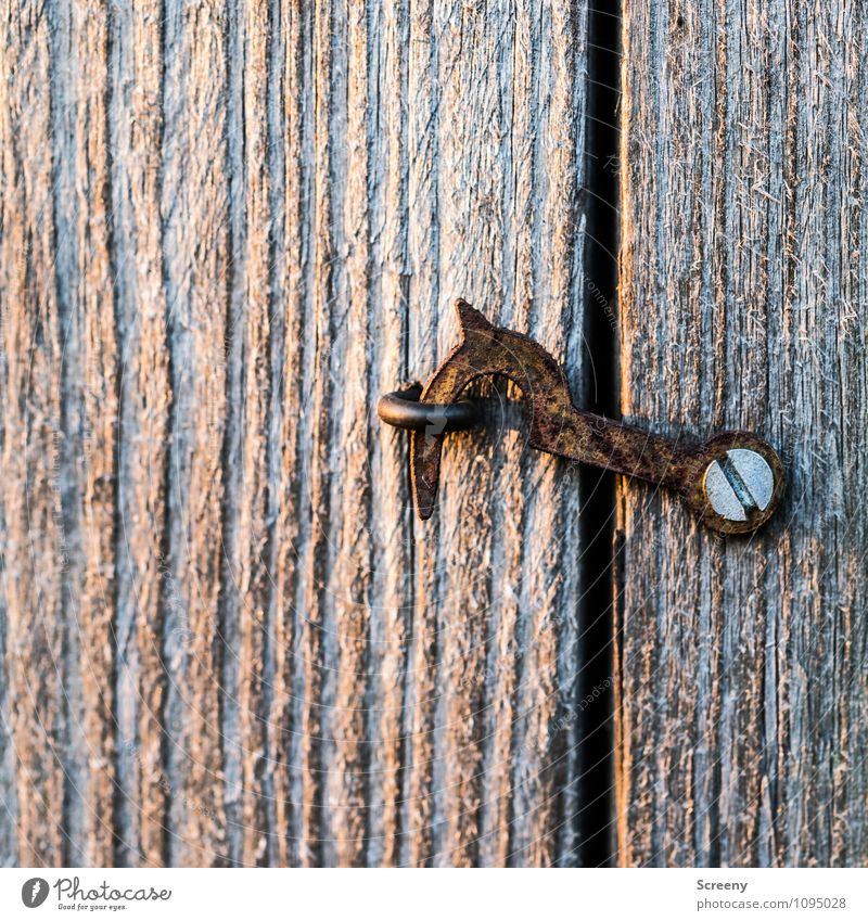 closed Locking bar Screw Wood Metal Rust Hang Old Small Brown Mysterious Curiosity Protection Bans Closed Checkmark Eyelet Eyebolt Car door Colour photo Detail