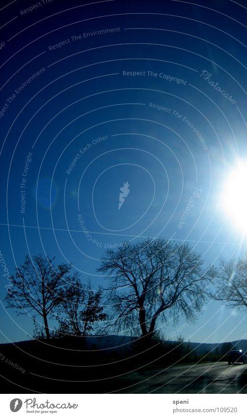 Sky Sun Loneliness Far-off places Autumn Meadow Freedom Landscape Horizon Blue sky Fireball