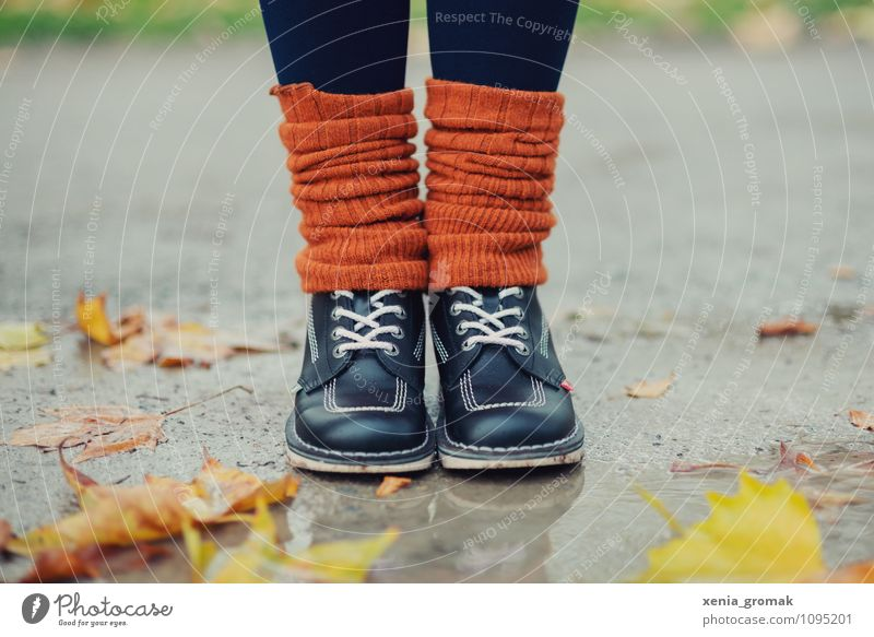 Human being Vacation & Travel Relaxation Leaf Far-off places Environment Life Autumn Spring Playing Happy Freedom Legs Feet Lifestyle Rain