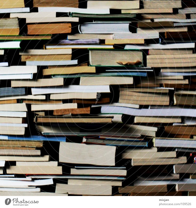 Book Reading Education Information Analog Collection Know Stack Print media Accumulation Heap Literature Symbols and metaphors Reading matter Waste paper Haptic