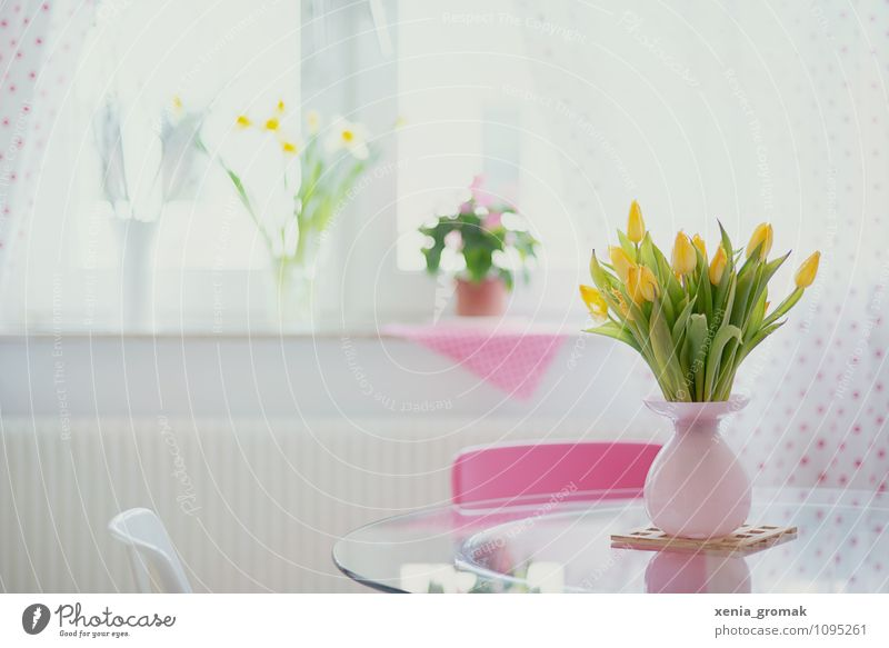Green Flower Calm Window Yellow Life Spring Happy Pink Lifestyle Flat (apartment) Leisure and hobbies Contentment Design Living or residing Esthetic