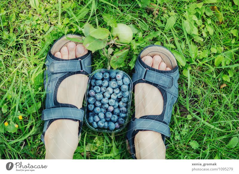 Vacation & Travel Relaxation Calm Far-off places Life Grass Playing Healthy Freedom Food Feet Lifestyle Fruit Leisure and hobbies Tourism Hiking