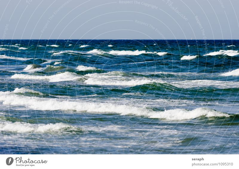 Waves Water Beach Baltic Sea Nature Ocean Coast Maritime Foam Flood Crest of the wave Tidal wave Movement Background picture Structures and shapes Wavy line