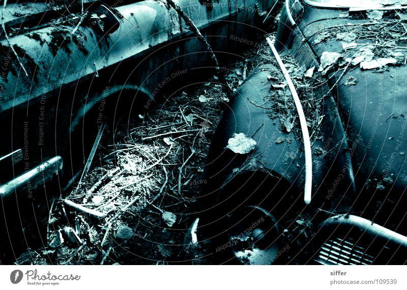 junkyard Scrap metal Wrecked car Cemetery Broken Rust Forget Oil Gasoline Putrefy Leaf Blue Black Industry Transience Beautiful Car car wreckage Loneliness