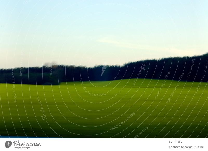 exposure Background picture Meadow Grass Forest Wood flour Clearing Field Green Horizon Horizontal Long exposure Driving Speed Sky Edge of the forest Flashy