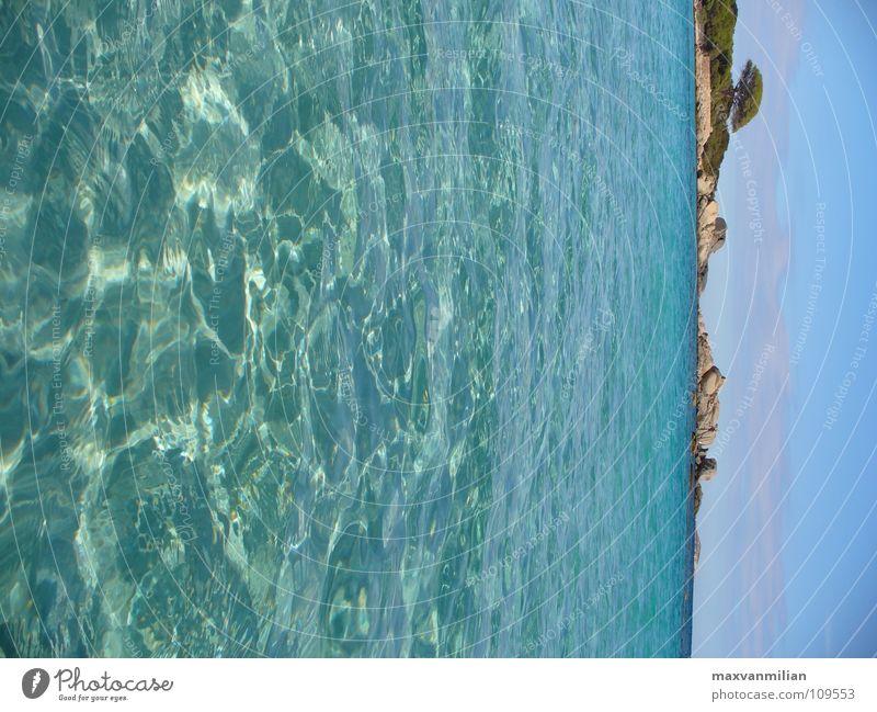 *BAY WATCH* Tree Ocean Beach Vacation & Travel Corsica Bay Water Sand Blue