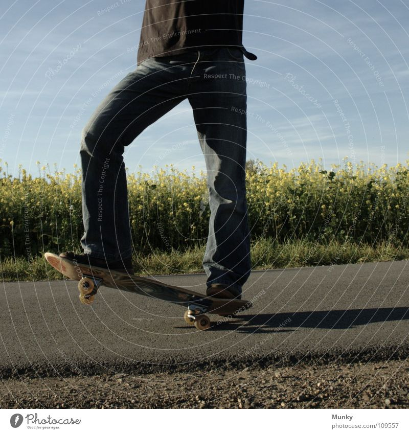 Skater One Clouds Bad weather Stripe Canola Plant Photosynthesis Blossom Agriculture Bio-diesel T-shirt Black Belt Pants Footwear Upper body Skateboarding