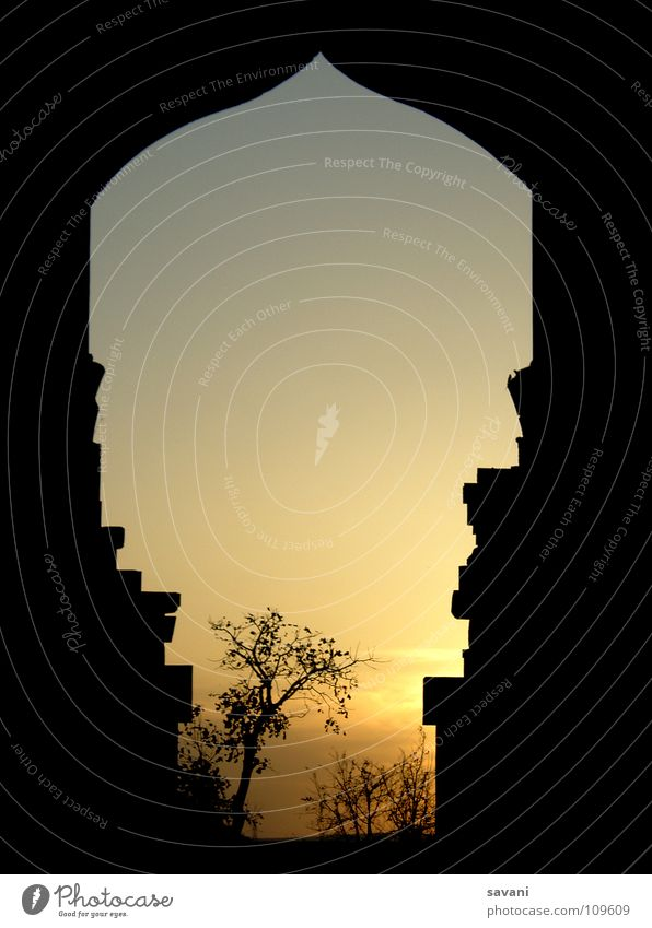 Nature Vacation & Travel Tree Sun Calm Far-off places Sadness Dream Romance Peace Historic Gate India Dusk Ruin Frame
