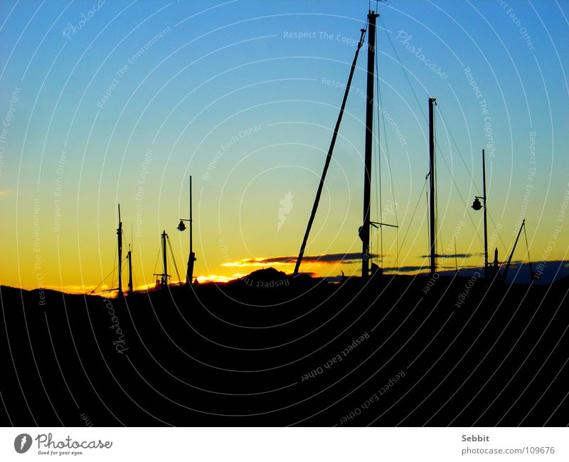 Sunset in the harbour St.Tropez Twilight Play of colours France Provence Yellow Watercraft Calm Romance Luxury Exterior shot Beach Coast Sky Transport Harbour