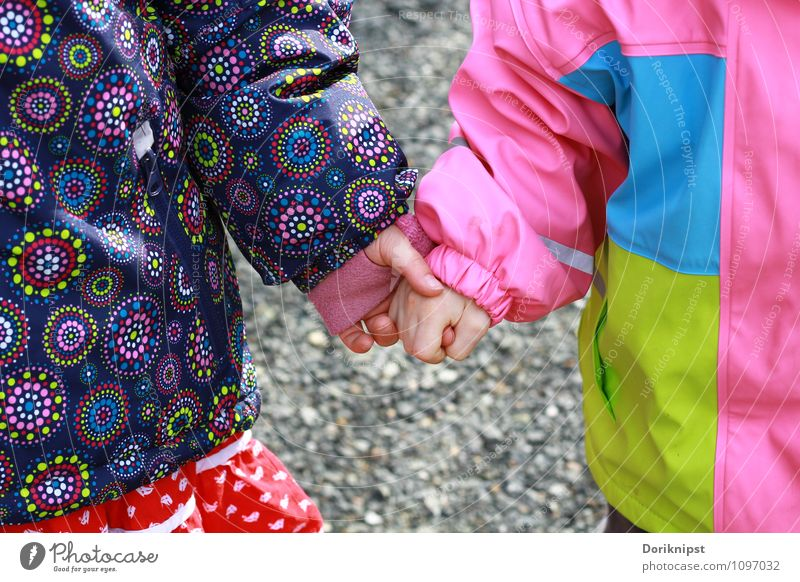 Human being Hand Life Happy Going Together Friendship Authentic Infancy Happiness Joie de vivre (Vitality) Cute Simple Touch Trust Toddler