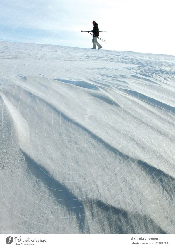 White Joy Winter Vacation & Travel Cold Snow Gray Landscape Bright Lighting Hiking Wind Horizon Perspective Skiing Frost