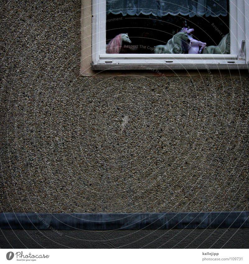 Cold Wall (building) Window Playing Freedom Dream Wall (barrier) Warmth Room Modern Infancy Horse Physics Toys Statue Window pane