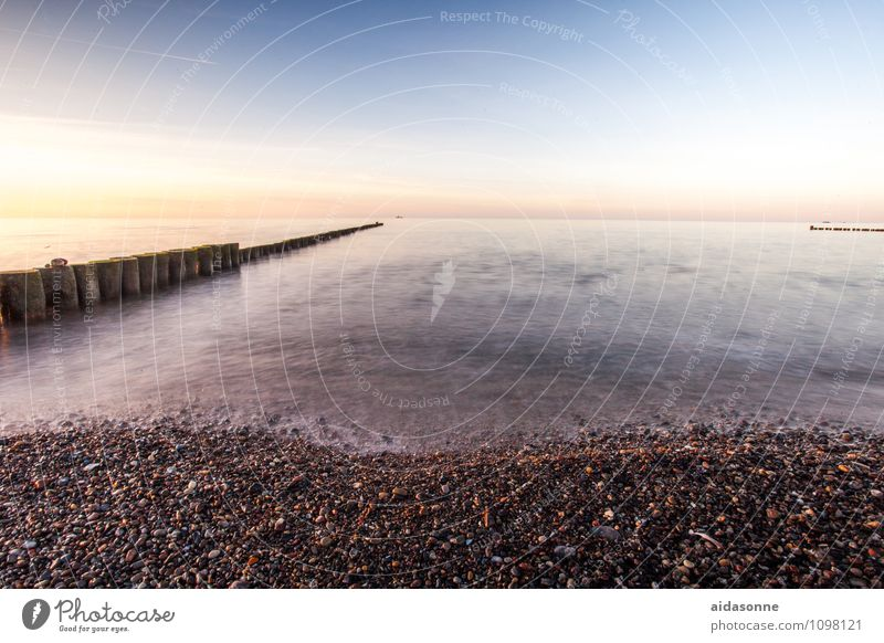Nature Water Landscape Calm Germany Horizon Beautiful weather Romance Baltic Sea Serene Cloudless sky Mecklenburg-Western Pomerania Attentive Wooden stake