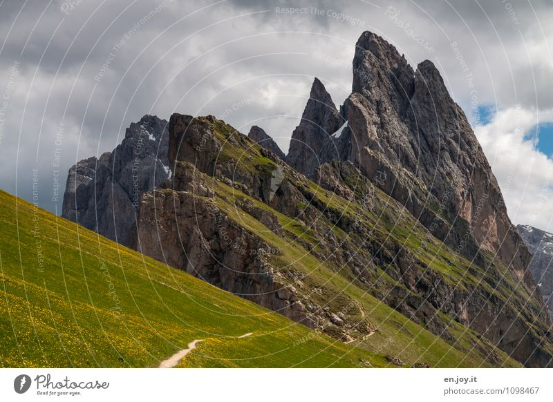 marginally Hiking Vacation & Travel Tourism Trip Summer Summer vacation Mountain Nature Landscape Plant Clouds Spring Bad weather Grass Flower meadow Rock Alps