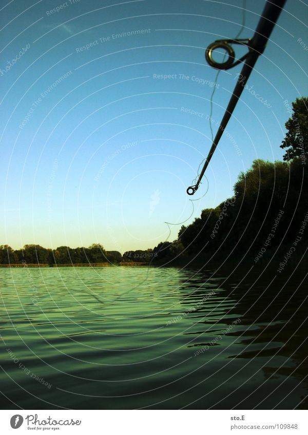 Nature Water Sky Tree Blue Calm Far-off places Lake Moody Horizon Circle Fish River Round Leisure and hobbies String
