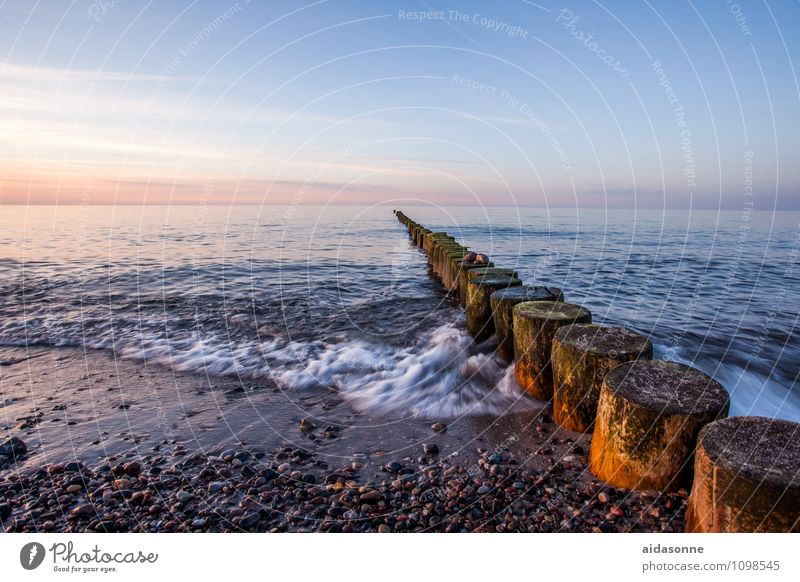 Baltic Landscape Water Cloudless sky Horizon Sunrise Sunset Beautiful weather Waves Beach Contentment Attentive Caution Serene Calm Life