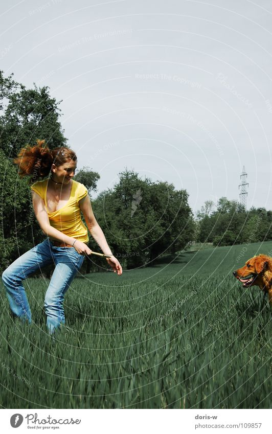 the walk with the dog Dog Golden Retriever Pelt Woman Red-haired Freckles Yellow Field Meadow Grass Tree Stick Joy Colour Playing Walking Laughter Movement