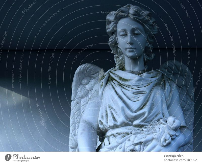 Woman Christmas & Advent Calm Loneliness Life Dark Death Stone Park Religion and faith Art Grief Angel Peace End Wing
