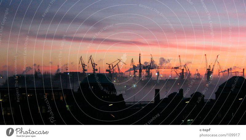 Cranes in Love 2 Sunset Romance Ocean Jetty House (Residential Structure) Harbour Hamburg Dusk Sky Silhouette