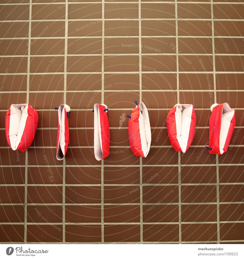 Water Sports Wall (building) Study Bathroom Swimming pool Wing Infancy Chemistry Water wings Aquatics Chlorine