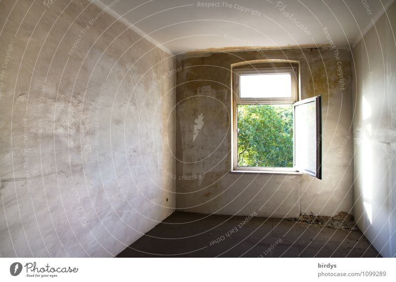 Found a way out Flat (apartment) Period apartment Room Interior design Window Esthetic Authentic Original Town Gray Green Hope Far-off places Open Graphic