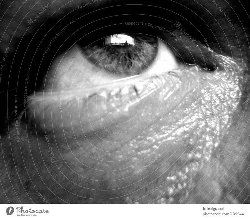 Human being Man Calm Eyes Life Emotions Sadness Fear Skin Grief Pain Passion Distress Damp Concern Eyelash