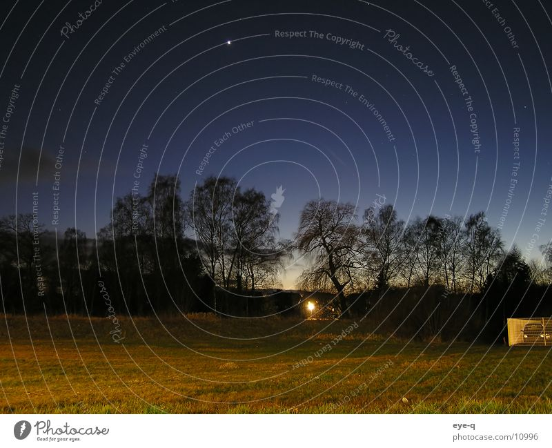 night landscape Stars Forest Night Dark Meadow Lighting Horizon Starry sky